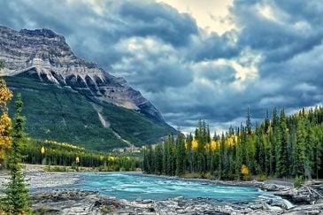 جنگل ها و دریاچه های کانادا - سازمان مهاجرتی lit
