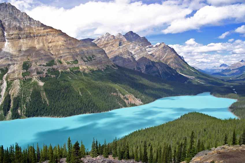 دریاچه peyto کانادا